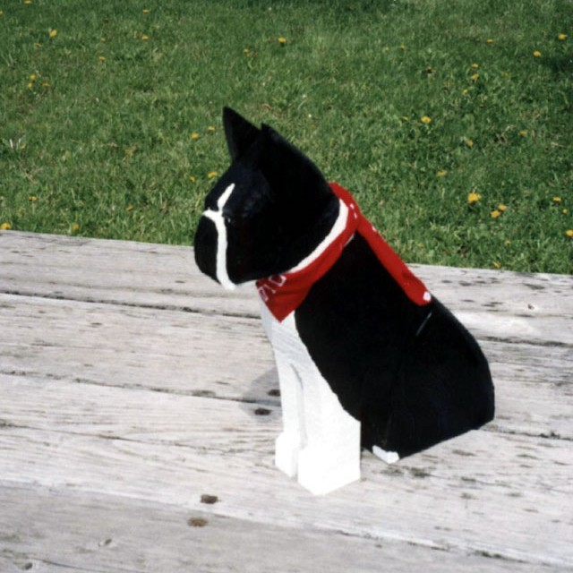 boston-terrier-sit_jpg